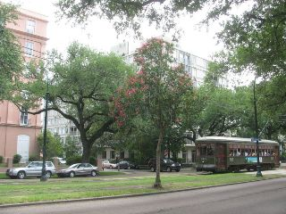 Streetcar on Charles Street in the Garden District of New Orleans